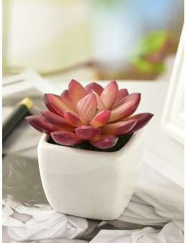 Artificial Blooming Succulent With Ceramic Pot